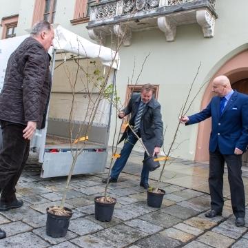 Baumspenden an die Stadt Landshut (25. April 2016)